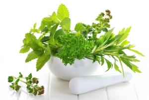 Herbs one